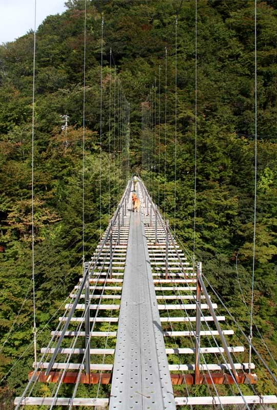 畑薙大吊橋(25)