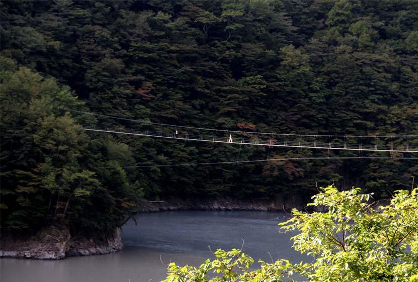 畑薙大吊橋(30)