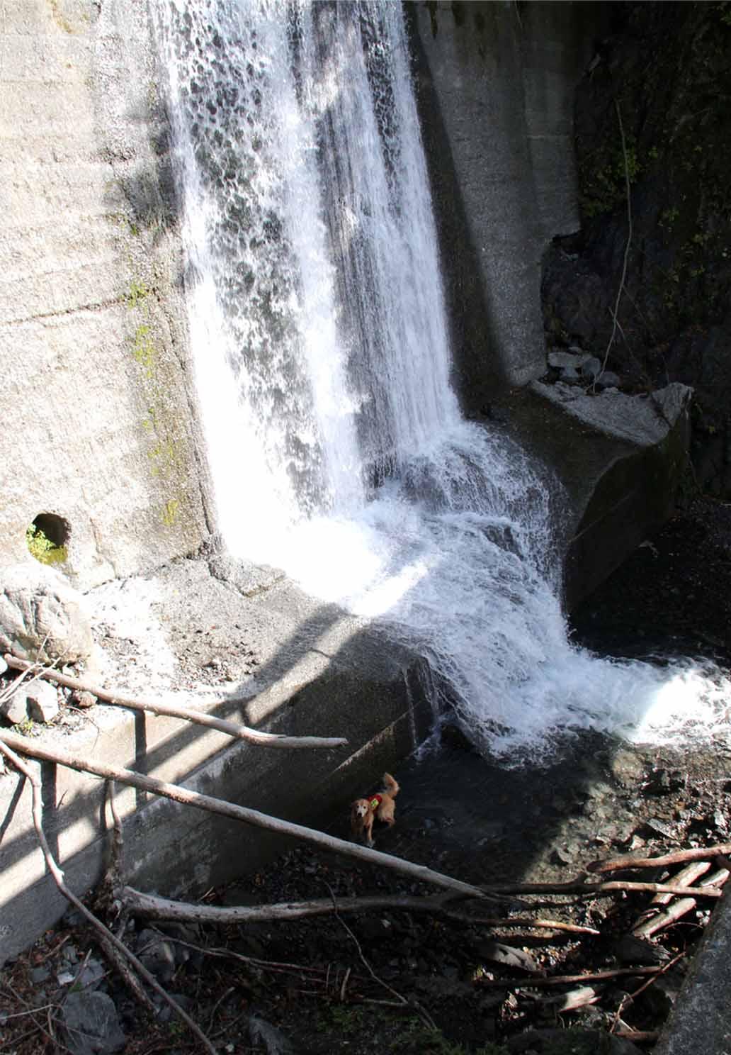 畑薙湖畔蓬沢堰堤で (4)