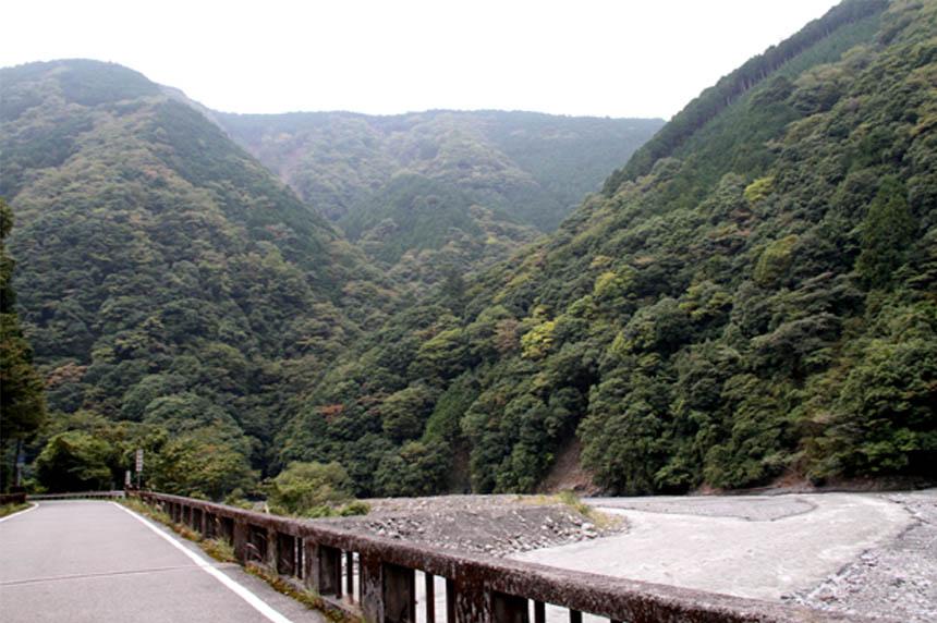 吊り橋ツアー(7)