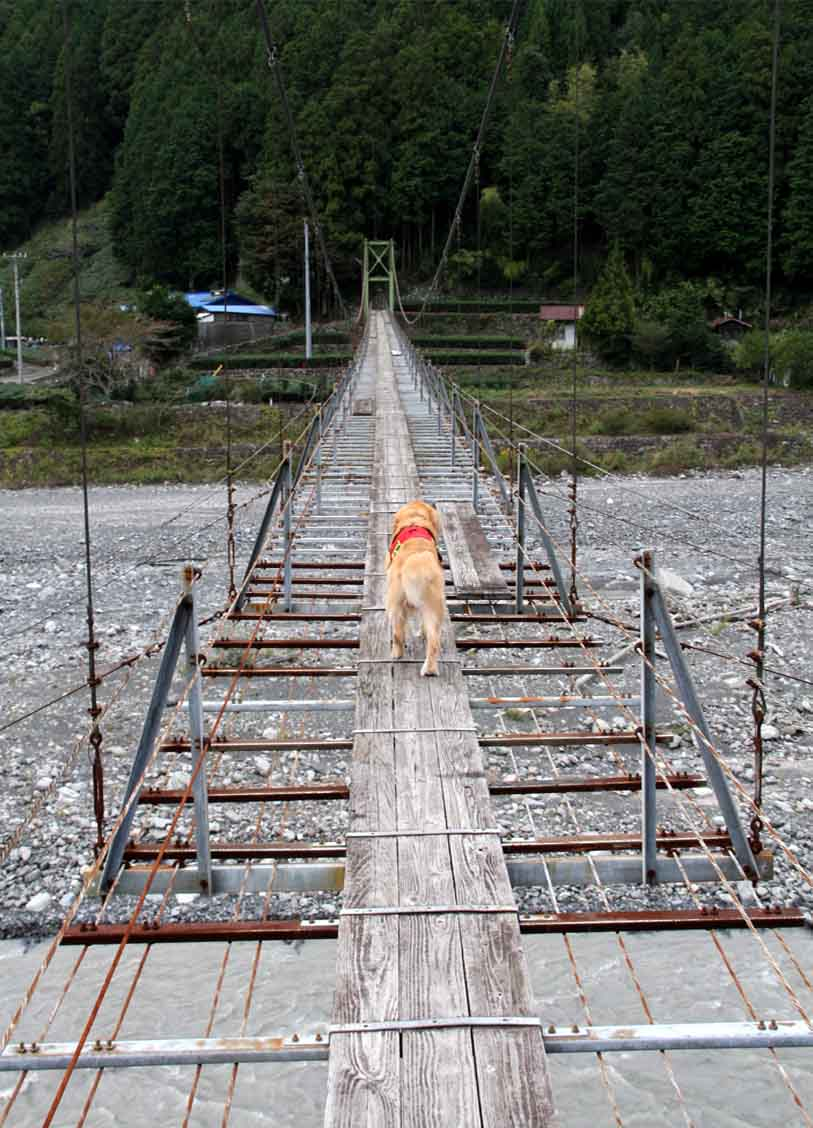 吊り橋ツアー(13)
