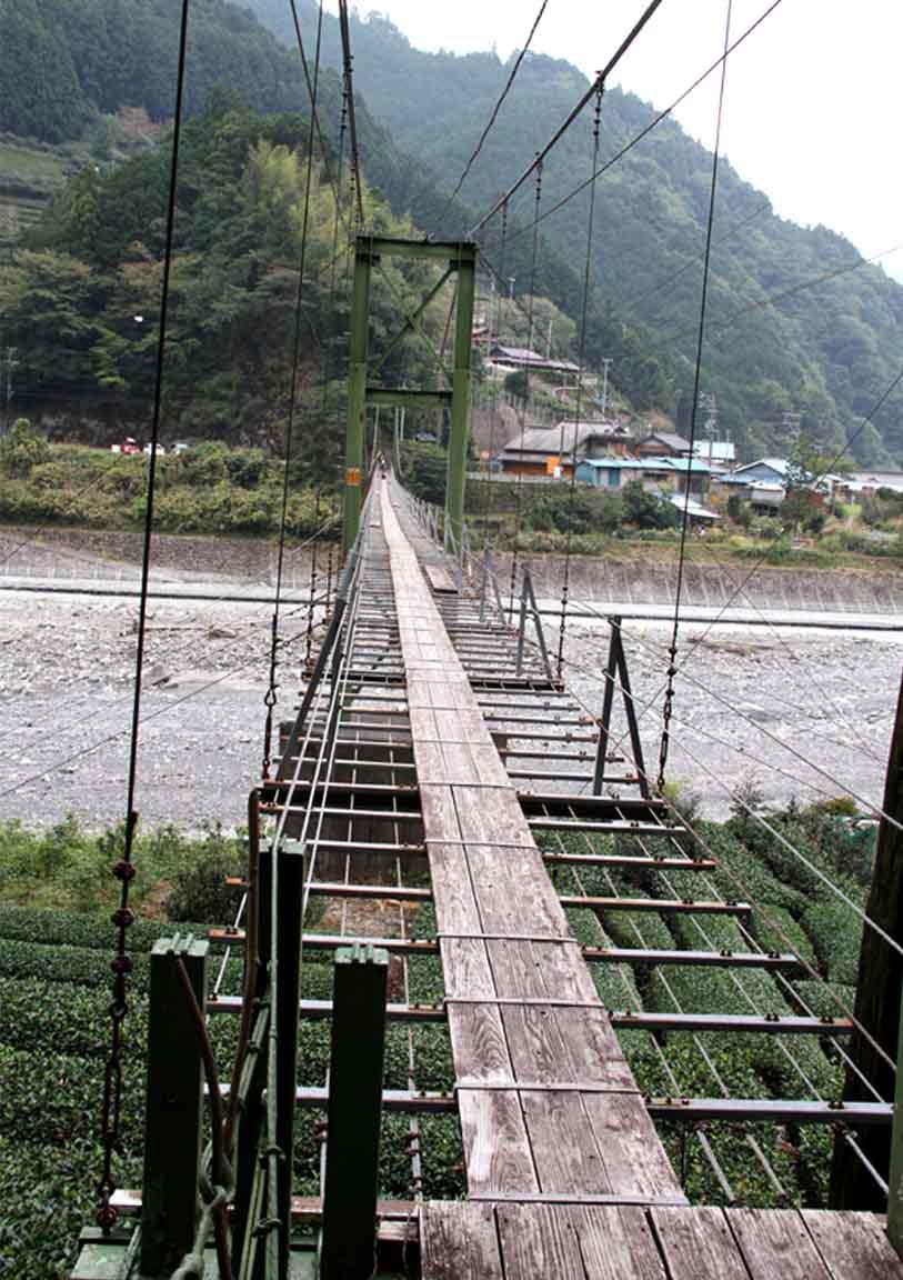 吊り橋ツアー(16)