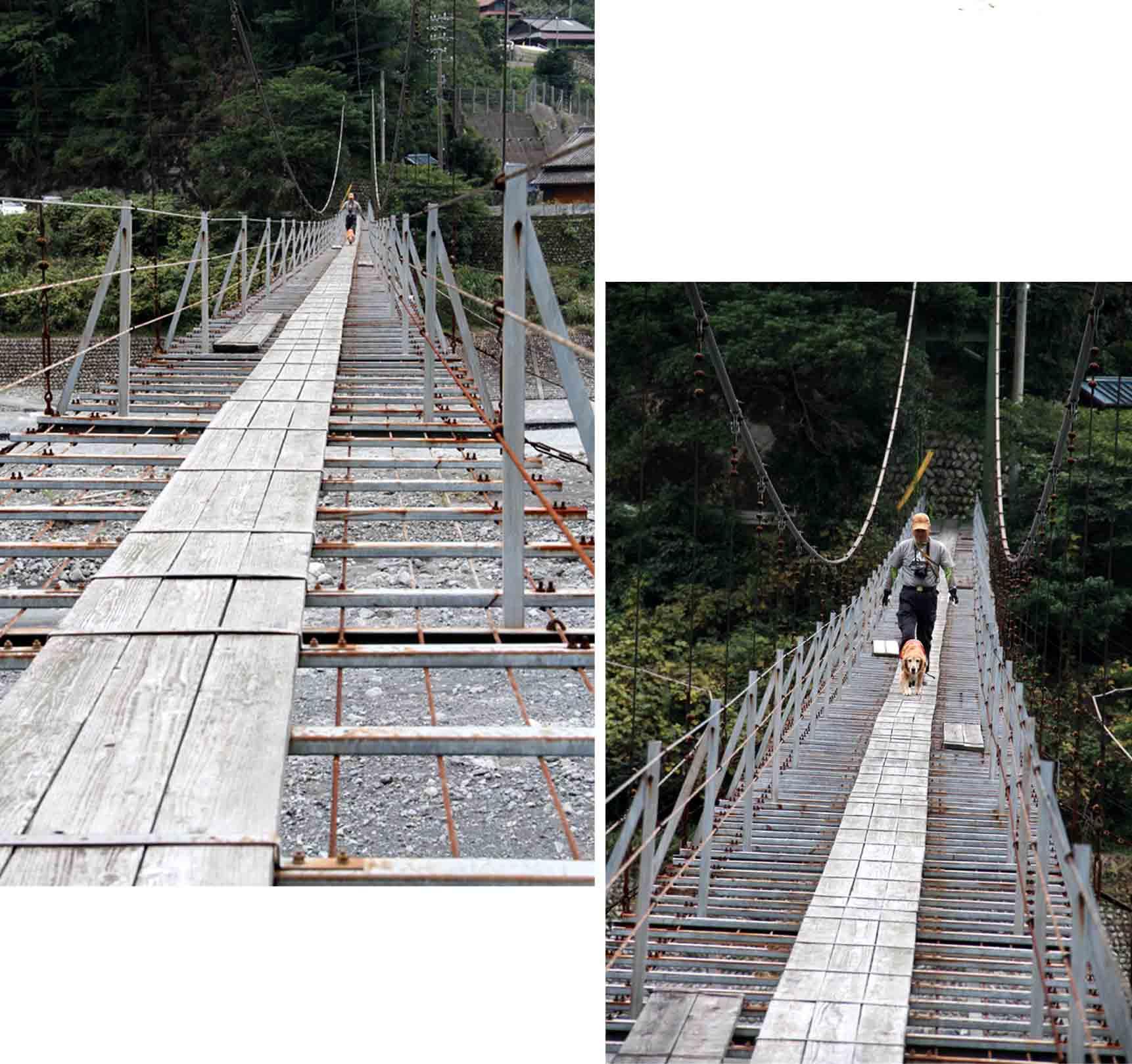 吊り橋ツアー(19)