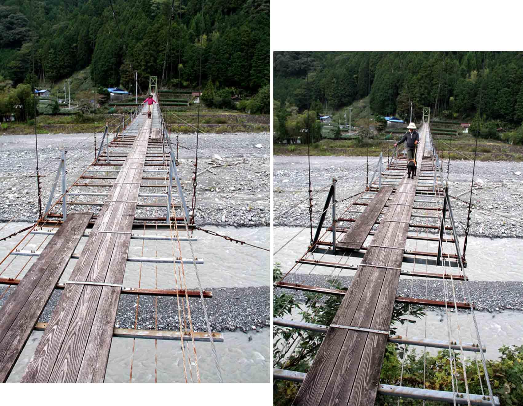 吊り橋ツアー(24)