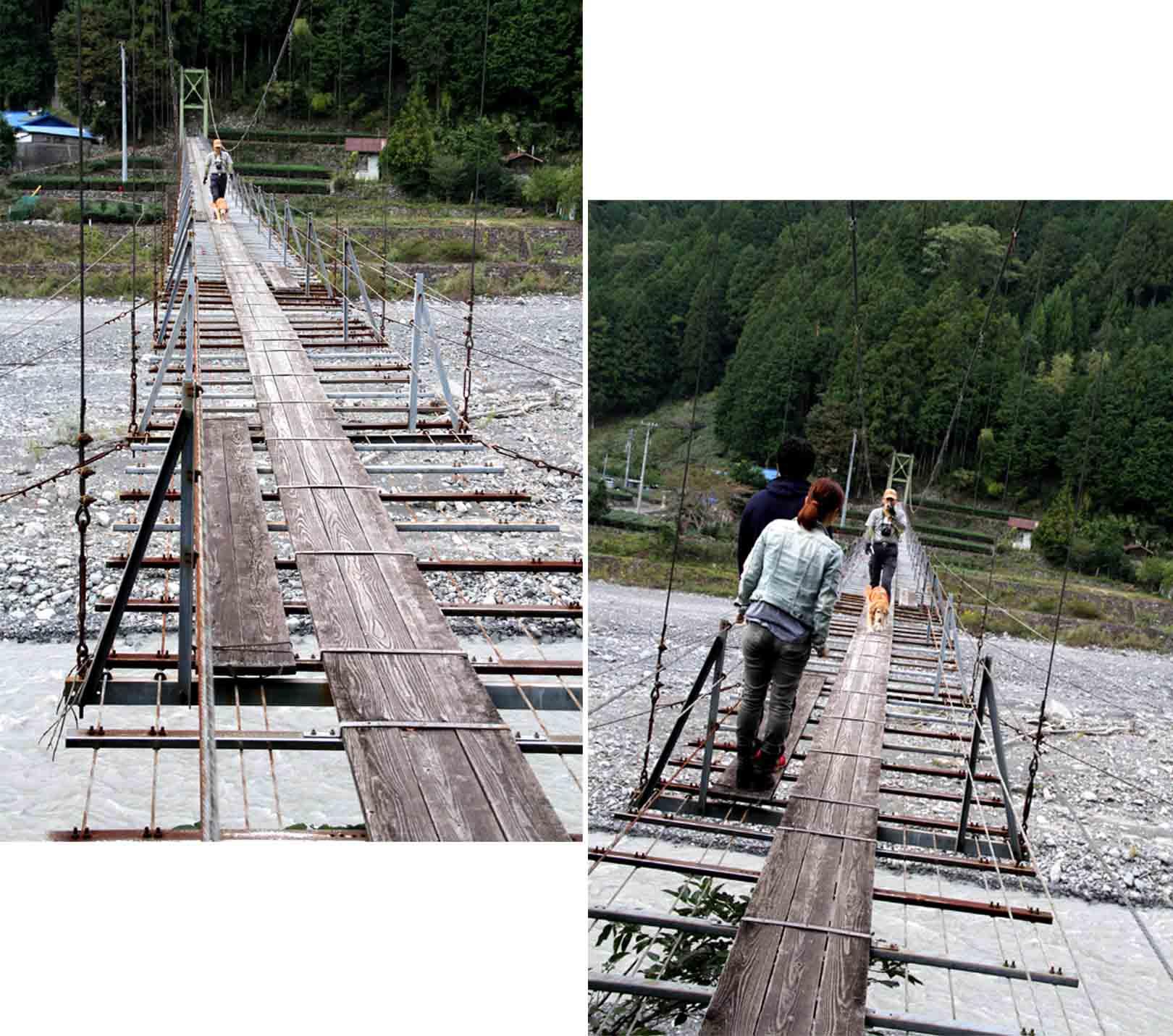 吊り橋ツアー(25)