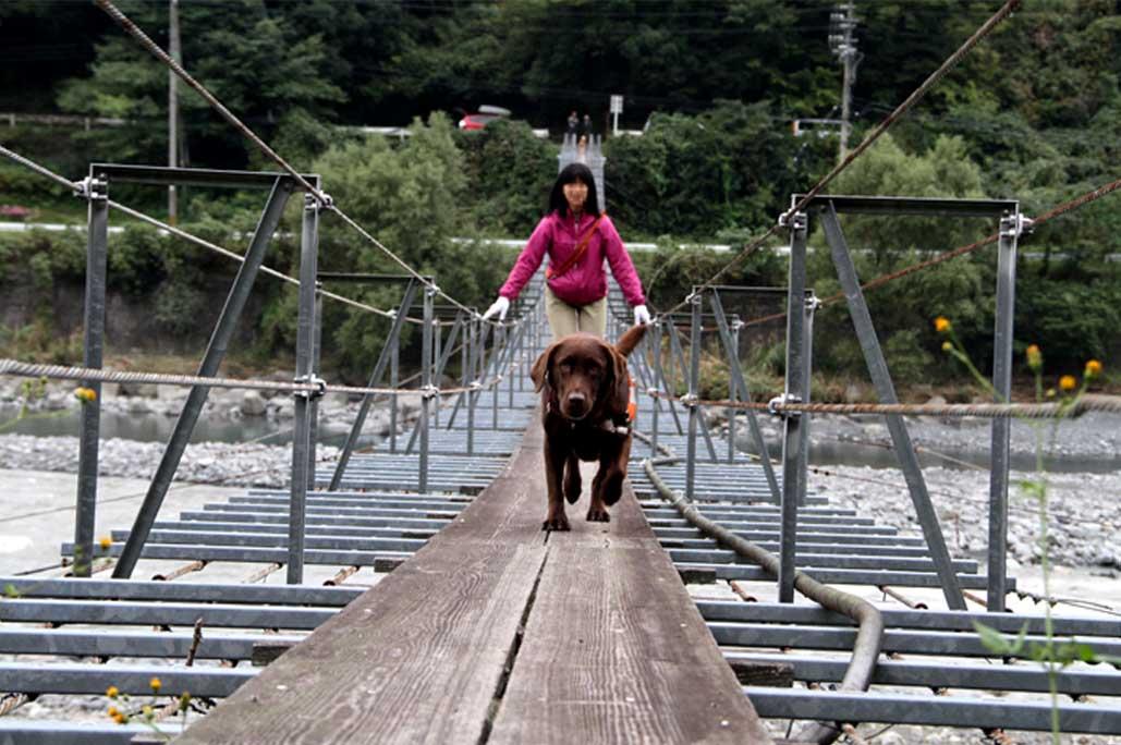 吊り橋ツアー(29)