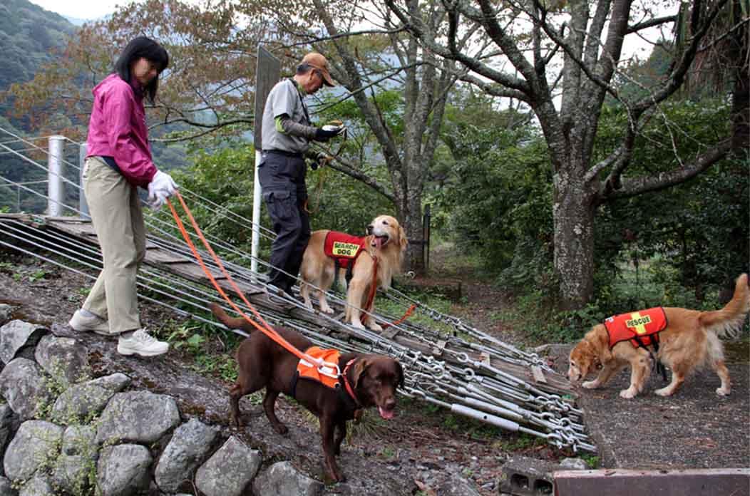 吊り橋ツアー(30)