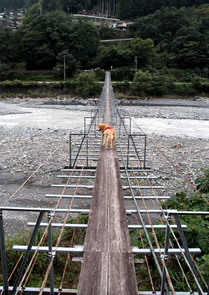 吊り橋ツアー(31)