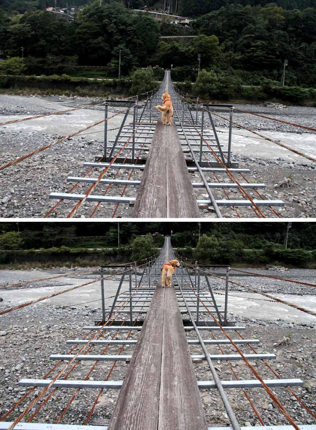 吊り橋ツアー(32)