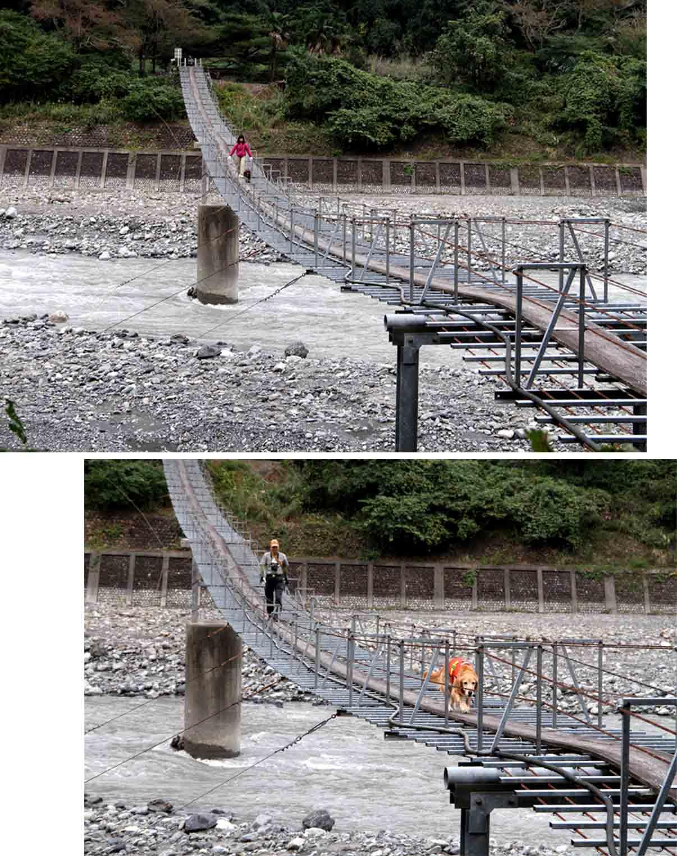 吊り橋ツアー(35)
