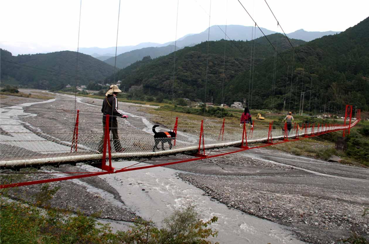 吊り橋ツアー(41)