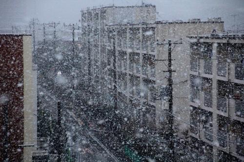 大雪北区2014