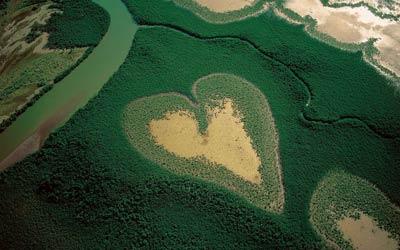 landscape-heart-field.jpg