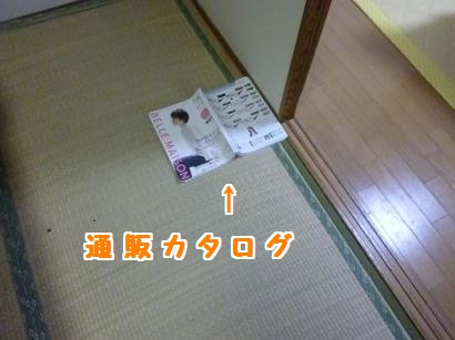 P1110214_convert_20120510204916.jpg