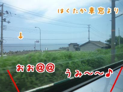 P1110816_convert_20120705080100.jpg