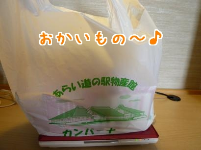 P1110828_convert_20120705195305.jpg