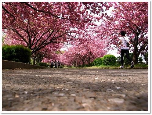 2012-04-25 川越水上公園 046