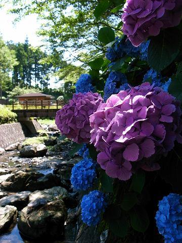 2012-07-04 雀川砂防ダム 039