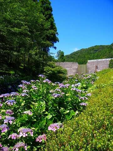 2012-07-04 雀川砂防ダム 040