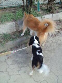 fc2blog_20120918121627ed4.jpg