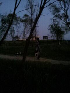 fc2blog_20121019234522af8.jpg