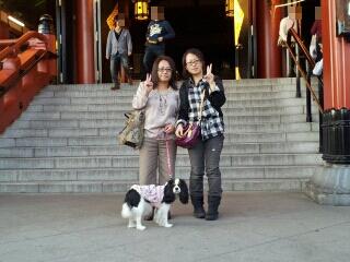fc2blog_2012110404355278e.jpeg