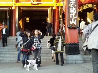 fc2blog_201211040437049f8.jpeg