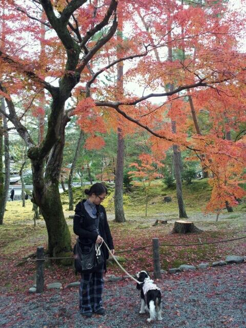fc2blog_20121124231820fa9.jpg