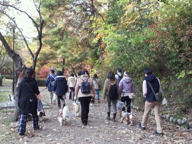 fc2blog_20121125014140d5e.jpg