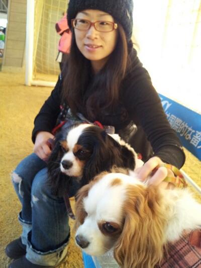 fc2blog_20121215235031a89.jpg