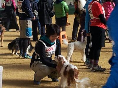 fc2blog_2012121600075191d.jpg