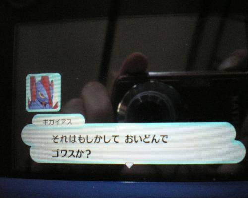 IMGP3297_convert_20121127191610.jpg