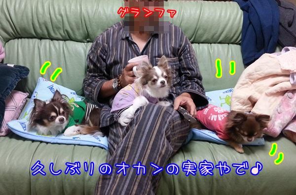20141103_210554.jpg