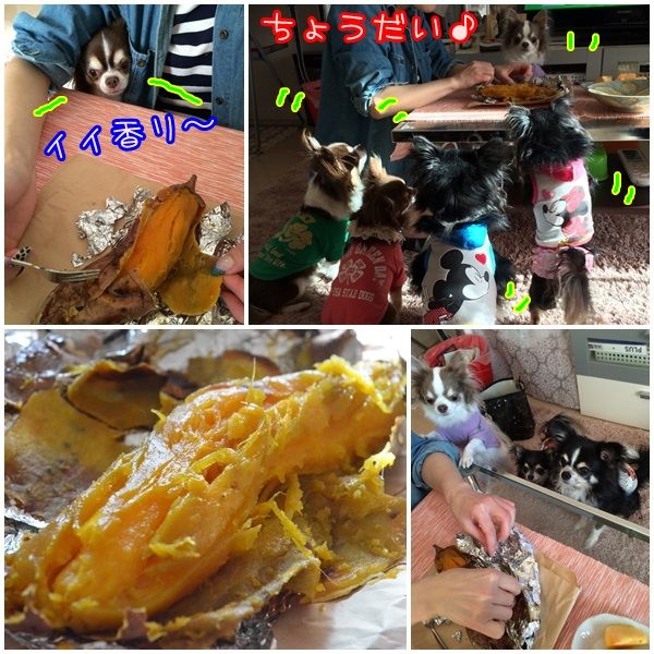 2page_20141104194139ce3.jpg