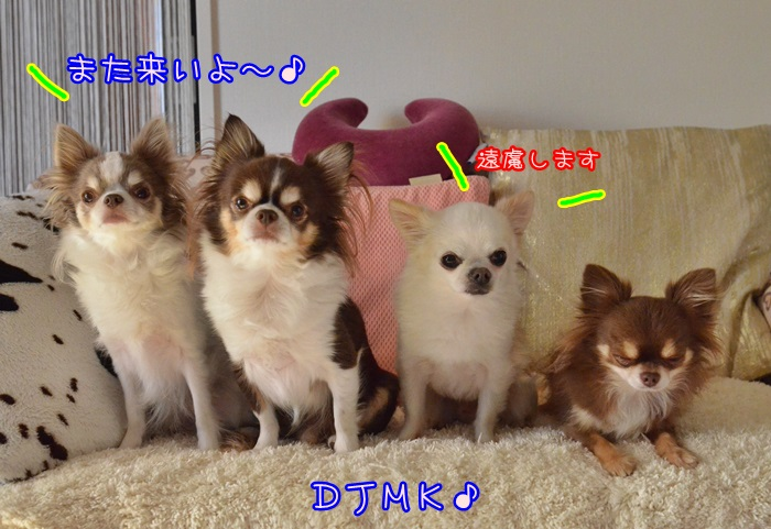 DSC_8230.jpg