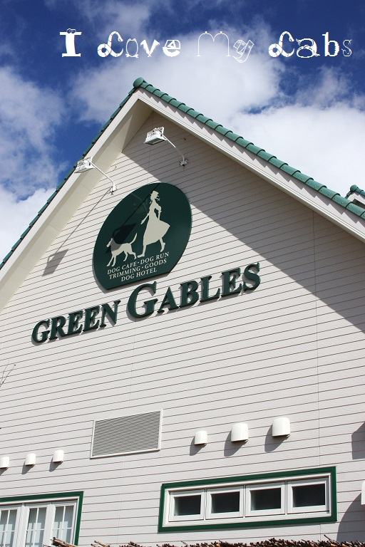 Green Gables Jan