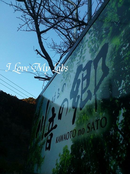 DSC_5452 (2)Haruna Feb 2013