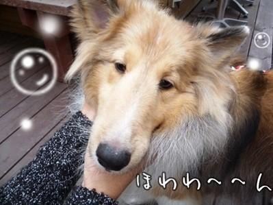 kako-Ey1O34tmYuxzN9C3.jpg