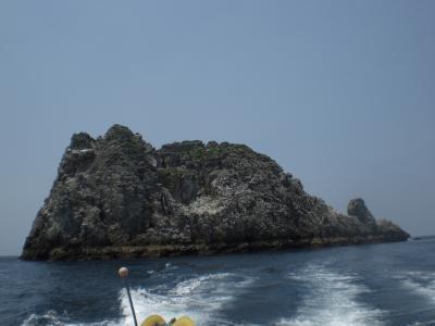久多島縮小