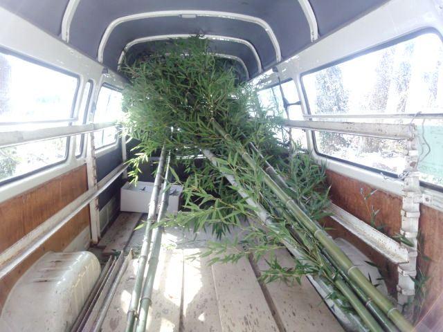 竹伐採積込み