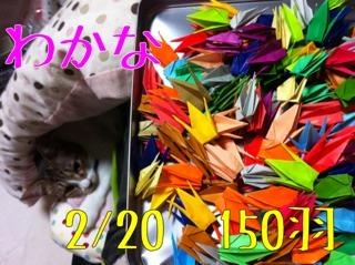 photo2 (1)
