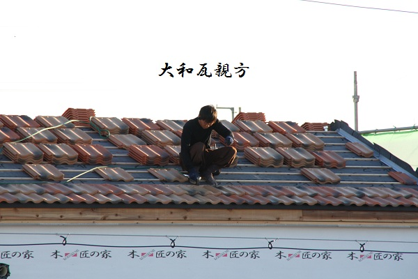 IMG_8308.jpg
