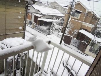 またもや大雪でした。