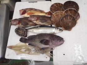 6鮮魚セット20131230