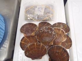 8鮮魚セット20131230