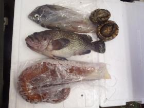 9鮮魚セット20131230
