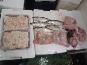 7鮮魚セット2014131