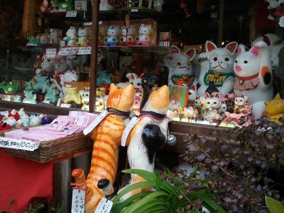 京都猫ねこネコ