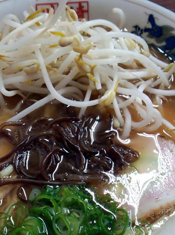 kawasaki201401032.jpg