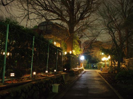 上野公園③